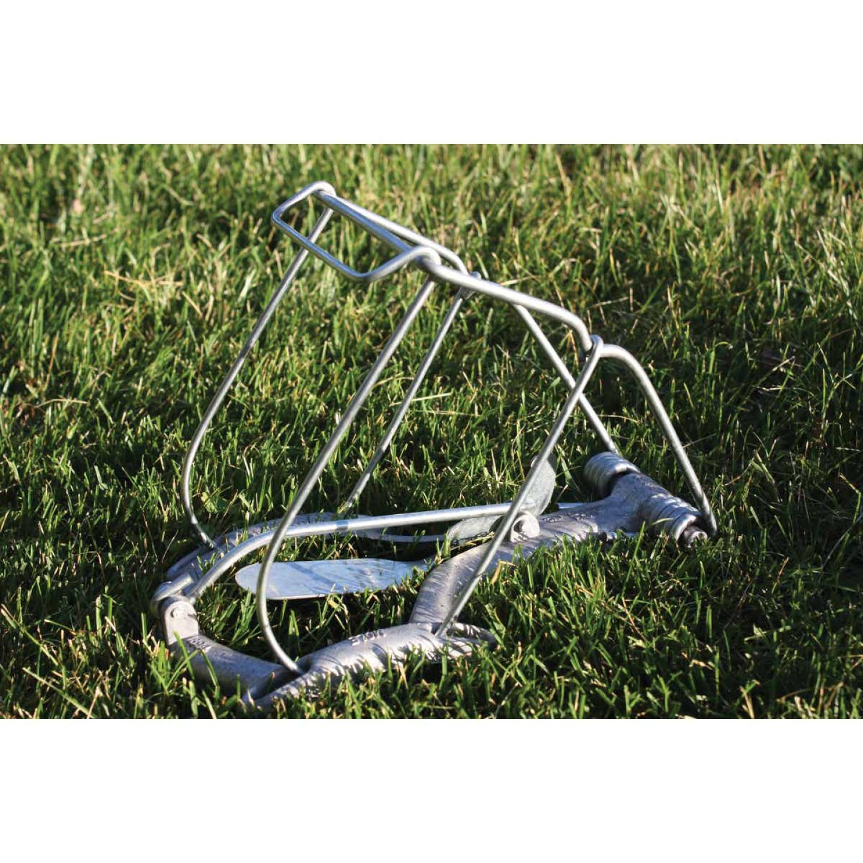 Nash Steel Choker Loop Mole Trap Image 3